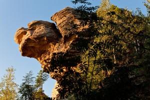 Скала Большая черепаха
