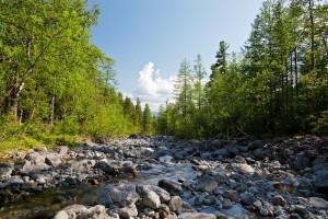 Горная речка Серебрянка