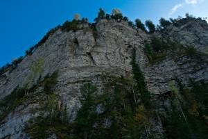 Скала Большое бревно - высота 60 метров