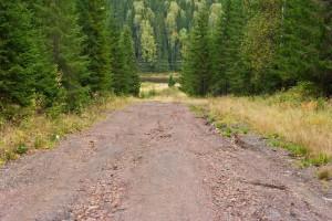 Дорога на р.Усьва от поселка Шумихинский