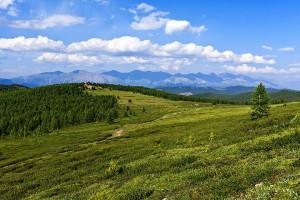 Алтай. На Оройском перевале.